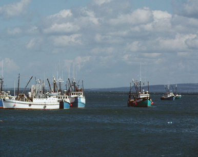 Mariner's Mart - Fishing Boats